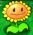 File:Sunflower Producing Sun.PNG