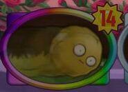 Wallnutbowling14