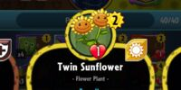 Twin Sunflower (PvZH)/Gallery