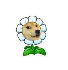 File:Marigold Doge.png