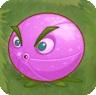 File:Purple Citron.jpg