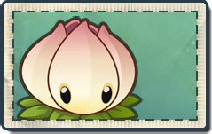 File:Power Lily Seed Packet.png