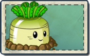 Greenturnip Seed Packet