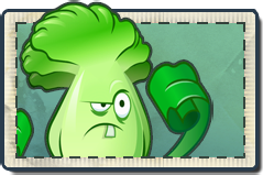 File:Bonk Choy Seed Packet.png