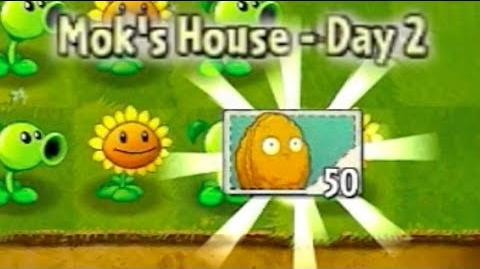 Player's House Day 2 - Walkthrough