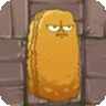 File:Tall-nut2C.png