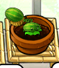 File:Smallmelon.png