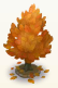 Campus fall tree 4