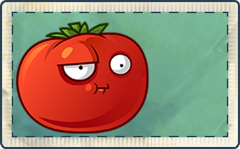 File:Tomato Seed Packet Full.png