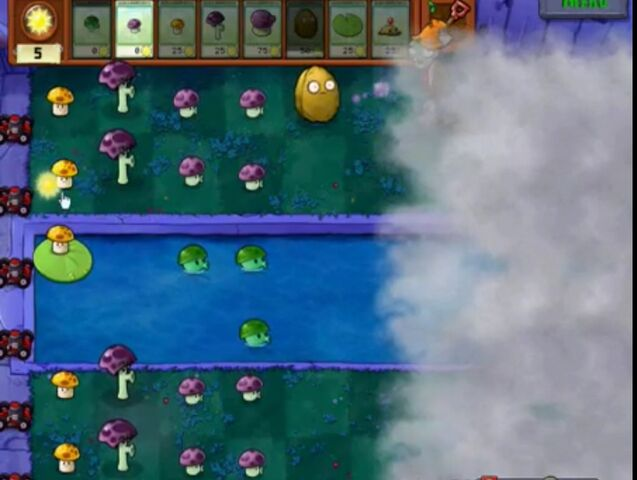 File:Level Fog1.jpg