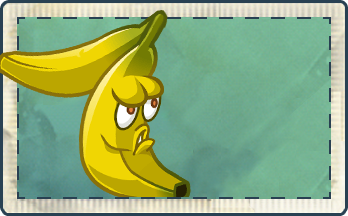 File:Banana Seed Packet Full.png