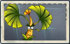 File:Banana Tree Far Future Seed Packet.png