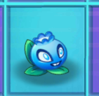 File:Electric BlueberryNMT2.png