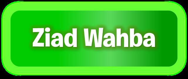 File:PvZ2 ZiadWahba WordmarkbyKh07.png