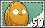 SeedPacketWall-nut