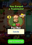 Earning Pea-Nut