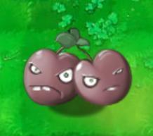 File:Cherry bomb.JPG