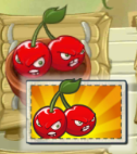 File:Cherry Bomb in Zen Garden.png
