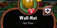 Wall-Nut (PvZH)/Gallery