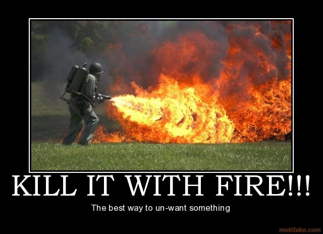 File:Kill-it-with-fire-demotivational-poster-1235695993.jpg