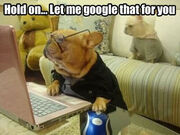 Let-me-google-that-for-you