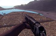 Pump shotgun in game