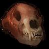 Bear Skull icon
