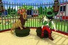 Playmobil-circus-tous-en-piste-wii-010