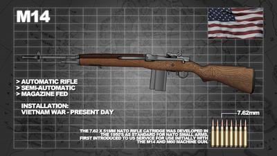 8-ammo-info