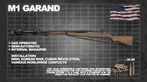 Z Armoury (Nazi Zombies Weaponry Guide) - The 'M1 Garand' (M1000 & The Imploder)