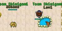 Team Shinigami