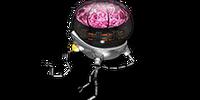 Wise Bot