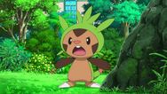 Myia's Chespin