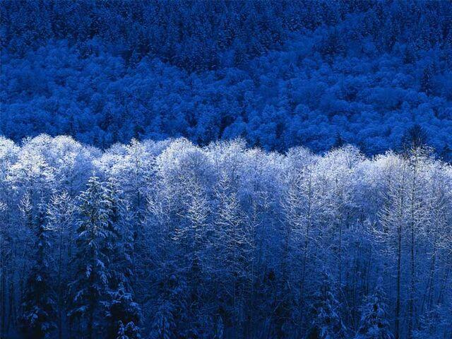 File:Invierno.jpg