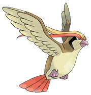 018 Pidgeot Art