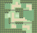 Route 202