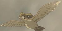 Sir Aaron's Pidgeot