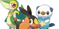 Unova Starter Pokémon