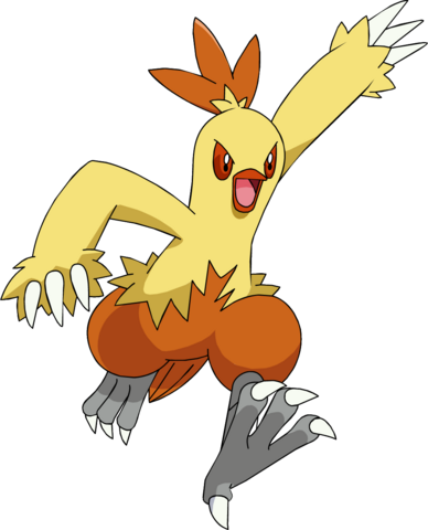 File:256Combusken AG anime 2.png