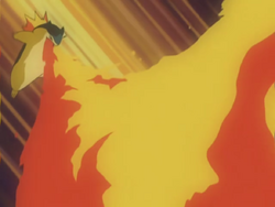Mr Moore Typhlosion Flamethrower