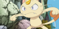 Mirror Team Rocket's Meowth