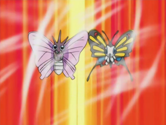 File:Chaz Venomoth Janet Beautifly Gust.png