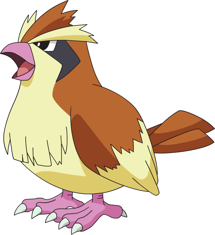 pidgey-pokemon