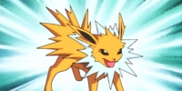 Exam instructor's Jolteon