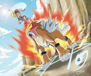 VS Entei Pokemon Ranger Guardian Signs