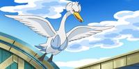 Skyla's Swanna (anime)
