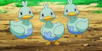 Ducklett (BW020)