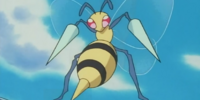 Jeanette's Beedrill (anime)