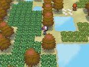 Dark grass pokemon