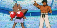 Bruno's Hitmonchan (anime)